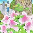 ヒラドツツジ(アケボノ)